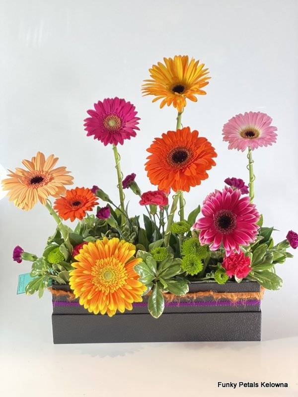 Funky Petals Signature Collection Fuzzy Peach