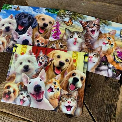 Card - Funny Furry Friends